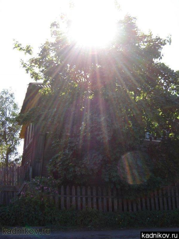 Лето на ул.Володарского