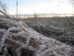 Первый мороз